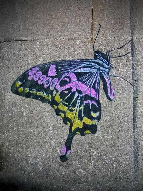 graffiti butterfly  nick walker  close  laser