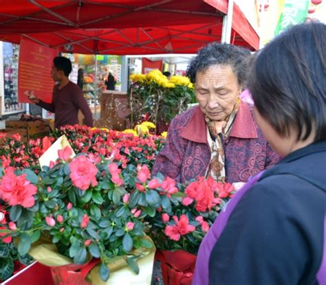 new year flower market fair new year flower market fair asia trend