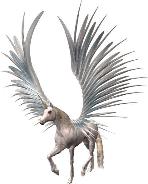 imagenes de unicornios voladores im 225 genes y gifs de unicornios fondos de pantalla y mucho m 225 s
