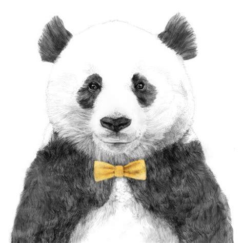 panda with bow tie illustration illustrations