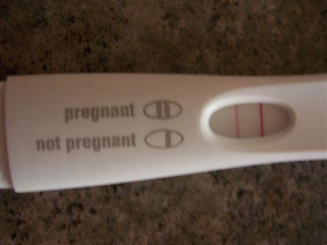 reliability  home pregnancy tests   accurate
