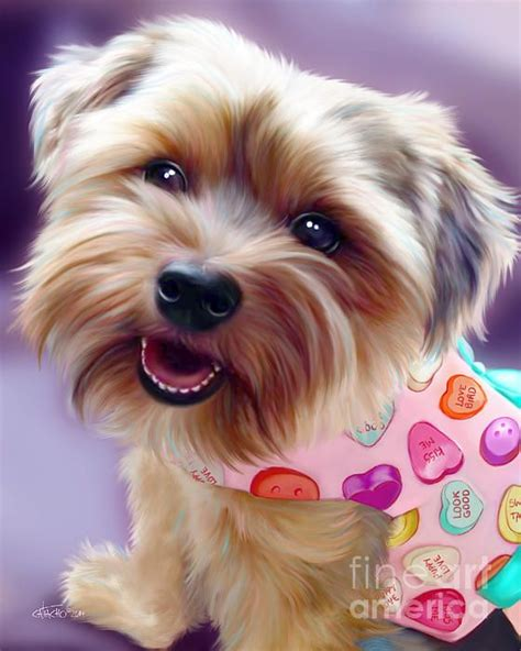 yorkie rescue tx 160 best images about arts bycatiacho on chihuahuas tater tots and poodles