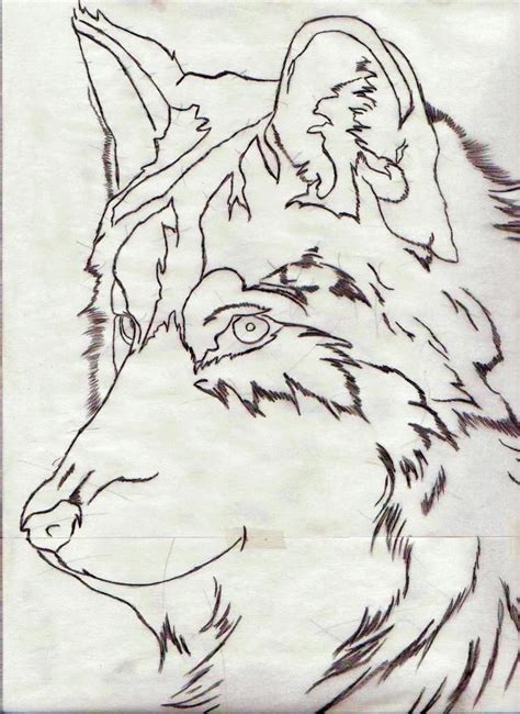 wolf outline tattoo best 25 outline drawing ideas on
