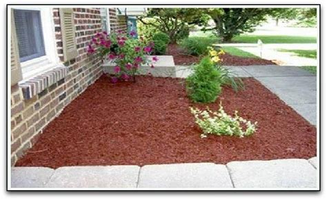 wood chips landscaping landscape colored wood chips
