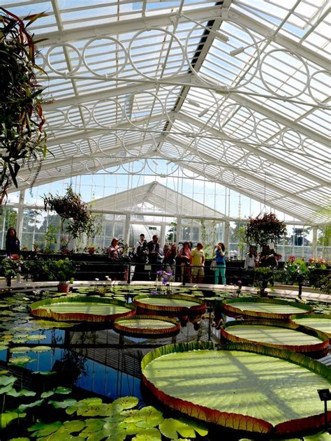 20 best travel kew gardens images on green