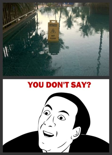 Very Funny Meme Pictures - funny memes you dont say