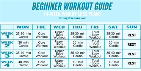 Galerry beginner workout calendar