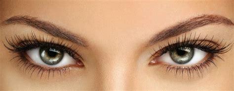 imagenes de ojos naturales extensiones de pesta 241 as el marco de una bonita mirada
