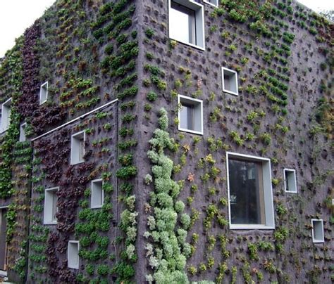 The Dawn Of A New Age Vertical Gardens Living Walls Living Wall Gardens