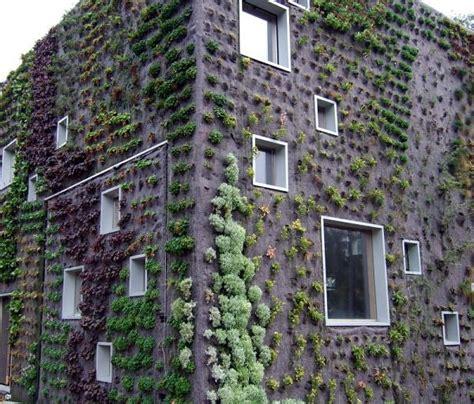The Dawn Of A New Age Vertical Gardens Living Walls Garden Living Wall