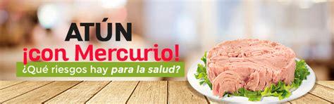 alimentos con mercurio at 250 n con mercurio 191 qu 233 riesgos implica para la salud