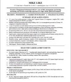 Fake Resume Example Fake Resume Generator Getessay Biz