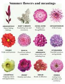 meaning of flower colors the meaning of flowers by botanicals