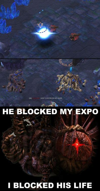 Starcraft 2 Meme - well that guy obviously isnt very good at ffe starcraft
