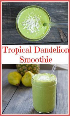 Tropical Green Detox Smoothie Recipe by Best Butter Lettuce Blend Recipe On