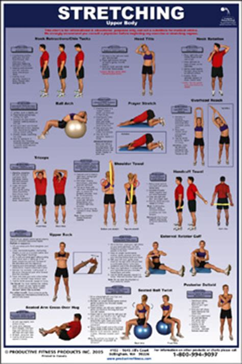exercise poster stretching fitness destination