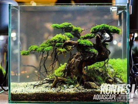 Fish Tank Aquascape Designs by 1 988 Me Gusta 3 Comentarios Aquascape Aquascapenl