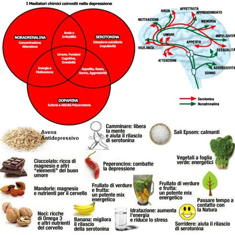 alimenti melatonina colon irritabile o sindrome dell intestino irritabile ibs