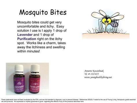 Insect Bites With Essential mosquito bites living essential oils essential