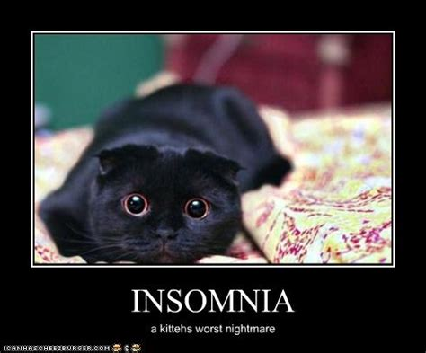 Insomniac Meme - insomnia motley news photos and fun
