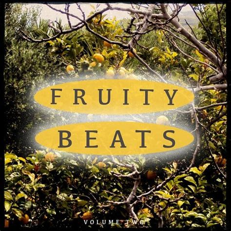 deep house music albums va fruity beats vol 2 amazing deep house music 2015 320kbpshouse net