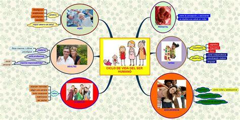 imagenes del ciclo de la vida humana x mind tic en educacion