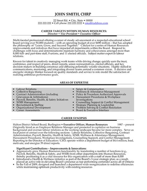 executive resumes templates director or vice president or executive officer resume
