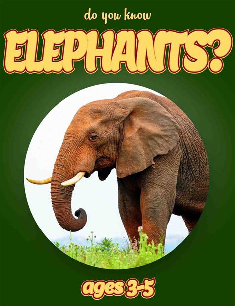 how to find an elephant books image gallery elephant book