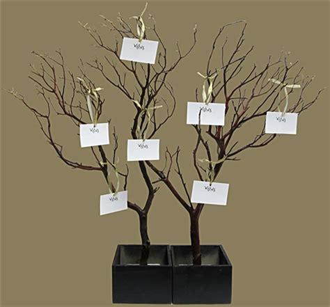 Acrylic Square Vase Manzanita Wish Tree Kit Shipping Included Blooms