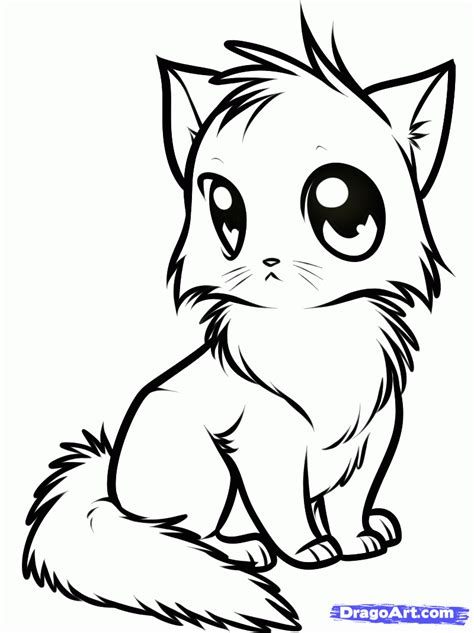 animal coloring pages kitten how to draw a cute anime cat step by step anime animals