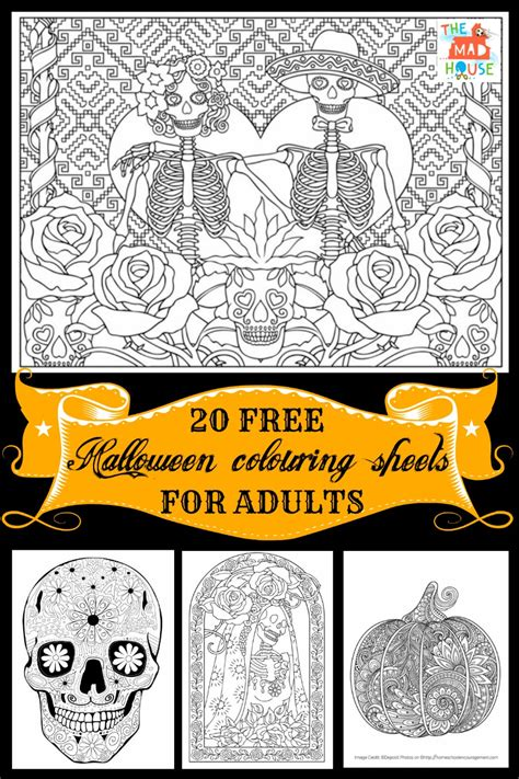 book for adults colouring pages for adults in the madhouse