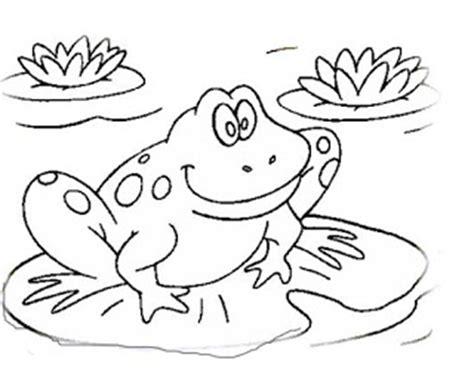 halaman belajar mewarnai gambar katak yang lucu
