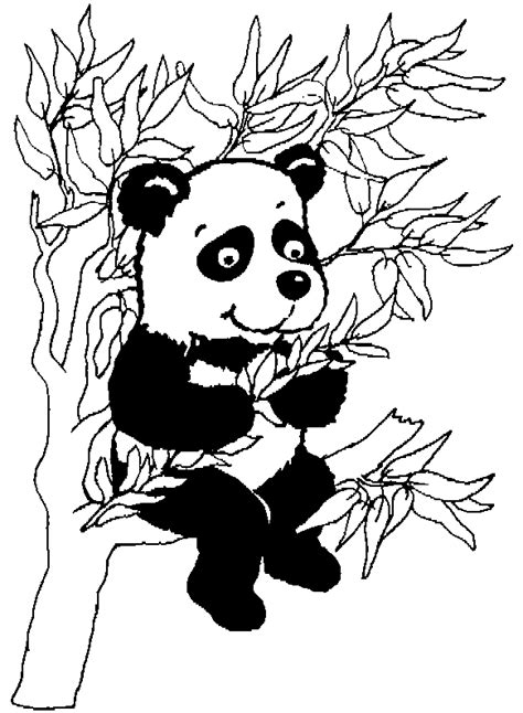animal coloring pages panda pandas coloring pages