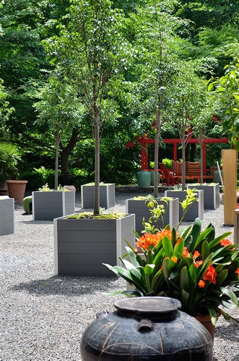 Large Square Garden Planters by 1000 Images About Trees Trees More Trees On