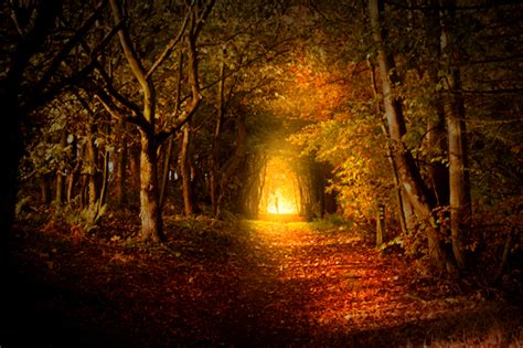 light on the path spiritual path archives lead kindly light