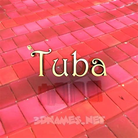 Modern Wallpaper tuba given name