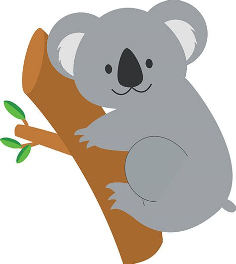 koala clipart royalty free koala clip vector images illustrations