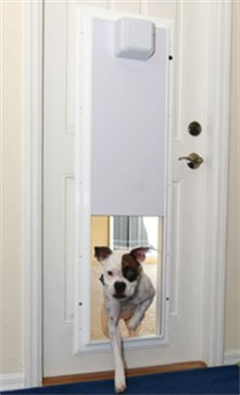plexidor s rfid activated sliding doggie door it s about time
