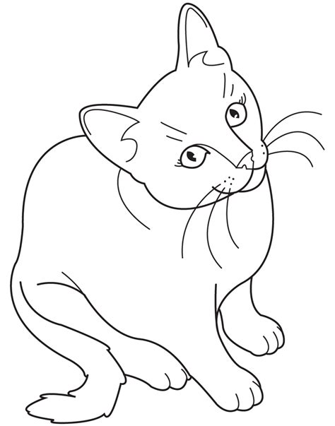 cat coloring page pdf cute kitty cat coloring pages collections gianfreda net