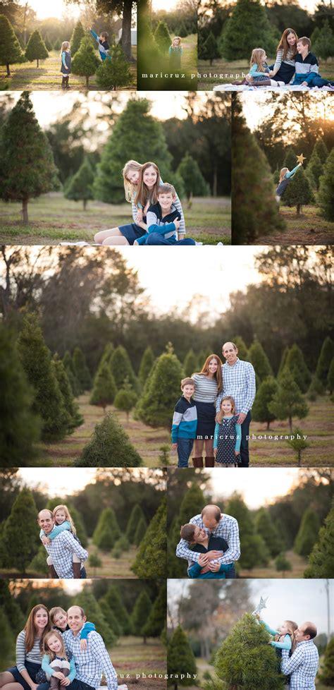 christmas tree farm tomball best 28 tree farm katy tx dewberry farm tree farm november 23 through