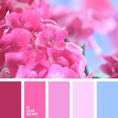 what color matches with pink and blue ð ð ðµñ ð ð ð ñ ð ð ð ð ñ ñ ð â 3307 in color balance