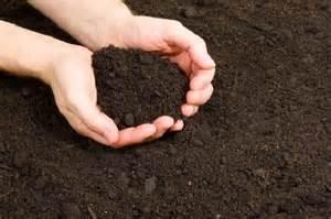 le sol de jardin les secrets d une bonne terre