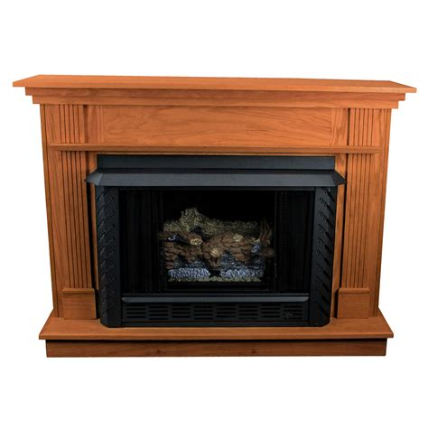 Vent Free Propane Fireplace by Hearth Vent Free Propane Fireplace Wayfair