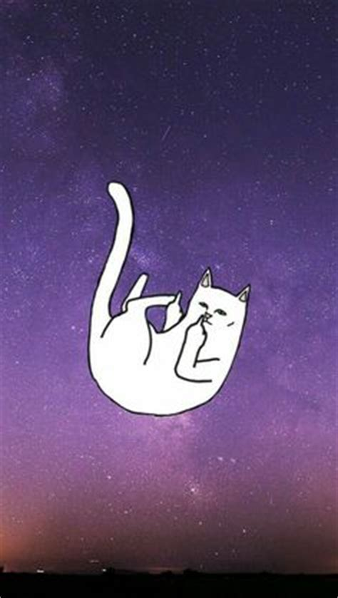 ripndip wallpaper cat ripndip iphone wallpaper ripndip middle finger cat