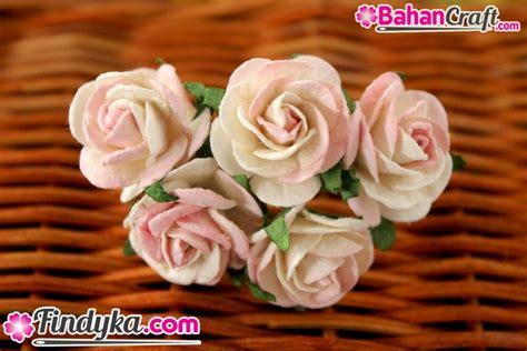 Paku Mawar Paku Mawar Lokal findyka aplikasi bunga mawar sedang putih sembur