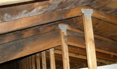 buying a house with mold in attic mold inspection sciences of san diego