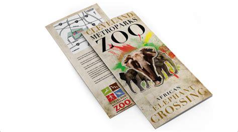 10 zoo brochure templates free premium templates