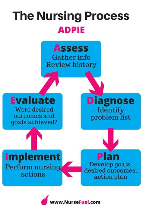 Nursing Process Essay by Nursing Process Essay Reportspdf771 Web Fc2