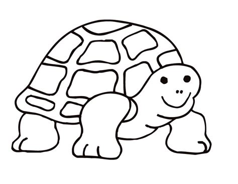 free coloring pages of colour in turtle