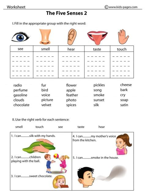 5 Senses Worksheets by 5 Senses Worksheets Printable New Calendar Template Site
